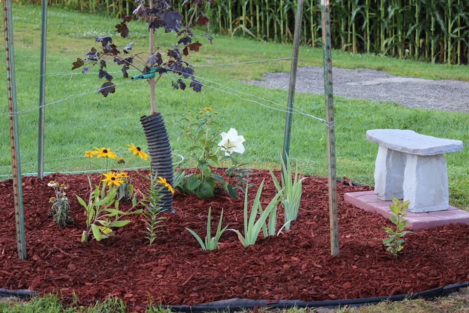 Chris's Memorial on Grandparnt's Farm